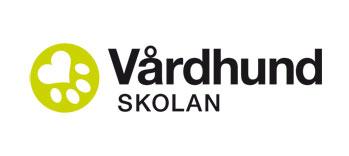 svenskademensdagarna